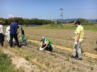 特別活動「農業体験」