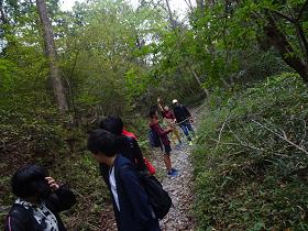 特別活動「秋のハイキング&バーベキュー」