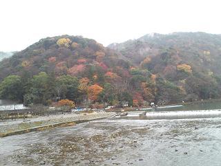 特別活動「嵐山観光」